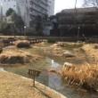 逃避ラン「大阪散策コース」