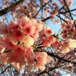 「春のオフ会」のお知らせ 〜追記あり〜