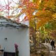 初冬の信州・・・小諸城址・・・小山敬三美術館あたりの紅葉・黄葉