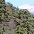 信濃路の・・・中山道をゆく・・・小県郡依田川の谷から・・・笠取峠へ