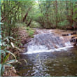 白井(しろい)の滝
