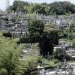先祖の墓参り