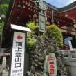 初夏の丹沢・大山を登る 6月初旬