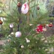 クリスマスイルミネーション 〜フライング Advent