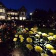 旧古河庭園のバラ ライトアップ・・5