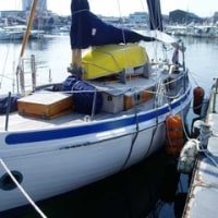 New Zealand から来た自作木造船
