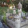 台風一過の「敬老の日」は亡き父の命日で「會津鶴ヶ城古武道祭」です(*^.^*)