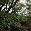2017/09 台風一過の赤城山を登る(その2)