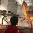 海浜幕張の恐竜博に行って来ましたよ!