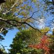 10月例会は母袋烏帽子岳(1340m)