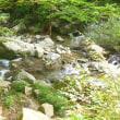 十方山(内黒-獅子谷ルート)登山(5)  下山