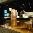 家康の散歩道 ⑭ 「浜松市博物館」