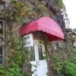 朝市の親睦旅行は、倉敷美観地区&岡山後楽園へ…