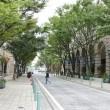 神戸・旧居留地まちかど景色