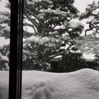 午後2時30分、大雪警報再発例。屋根からの落雪も加算して、1mの積雪。