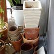ベランダの植木鉢整理は何とか見通しつきました
