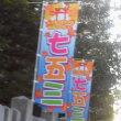 神社のぼりが代わってた。北海道神宮頓宮にて