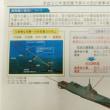 中国や南北朝鮮などからの高まる脅威や挑発に対抗するには日本の自主防衛力の確立が不可欠だ!!