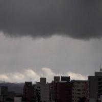 今日の金沢、ビミョウな空模様。ときおり雪が舞っています。