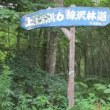 北海道☆林道ツーリング2017(⑥午後から雨らしい?)