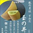 秋はやはり寺島なす使用の焼き菓子【玉の井の月】