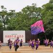 『らんぶるみなみ』 原宿表参道元氣祭 スーパーよさこい 2017