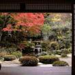 日本文化 「わび」「さび」