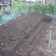 畑土作り・2