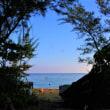 朝の東シナ海
