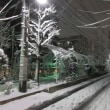 積雪9cm久々の雪景色