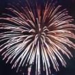 8月3日北海道新聞主催の花火大会