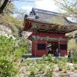 マダラ鬼神祭:日本二大鬼祭の一つ (2018/04/08)