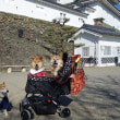 和歌山城は誰の?