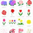 花イラスト素材集