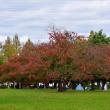堺市・大泉緑地の風景・・・7
