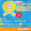今日はMieMu(三重県総合博物館)にやってきました