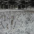 雪景色 part 2