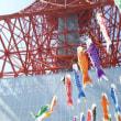 こいのぼり@東京タワー