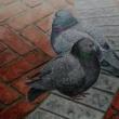 煉瓦と鳩と
