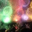 今年も長岡花火に行ってきました!