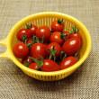 ジャガイモ&ミニトマト