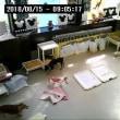 2018年8月15日ライブアニメーション カメラ 2