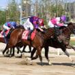 韓国国際競走で日本馬が大活躍!ロンドンタウンはコリアカップ2連覇。