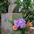 一面の紫に圧倒されます!・・・本薬師寺跡 ホテイアオイ