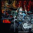 drummer(chicago)