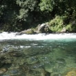 9月10日 那比川・亀尾島川で鮎釣り!