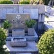 鎌倉霊園掃苔パート2
