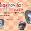 新年明けましておめでとうございます