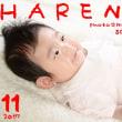 『100日 データ5カット¥10000』 札幌格安写真館ハレノヒ
