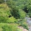 8/13(日)その1 朝食~宝川温泉